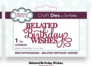 Mini Expressions Collection - Belated Birthday Wishes